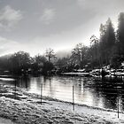 Morning by the River Tay by GerryMac