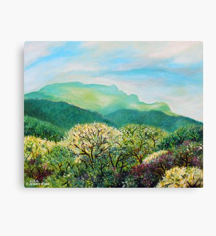 'SUMMER ON GRANDFATHER MOUNTAIN'  Canvas Print