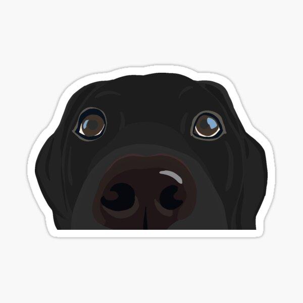 Neugieriger schwarzer Laborwelpe Sticker