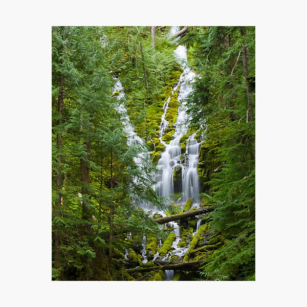 Upper Proxy Falls Photographic Print