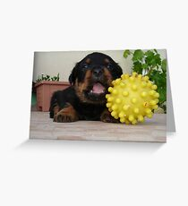 Tiny Rottweiler Puppy Playing With Large Toy Ball Greeting Card