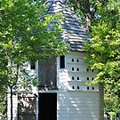 Thomas Wadlington Pigeon House  by Ellen  Price - Greenwald