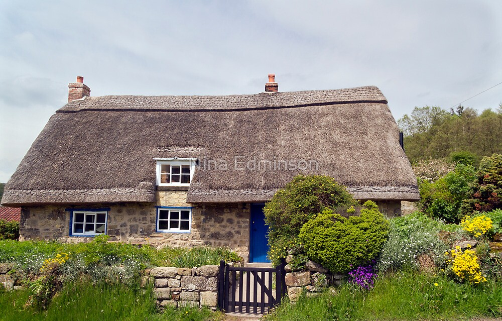 The Thatched Cottage by partridge
