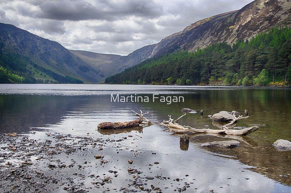 Upper Lake by Martina Fagan