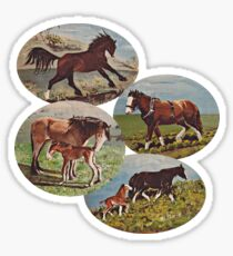 D1G1TAL-M00DZ ~ GALLIMAUFRY ~ My Horses 2 by tasmanianartist Sticker