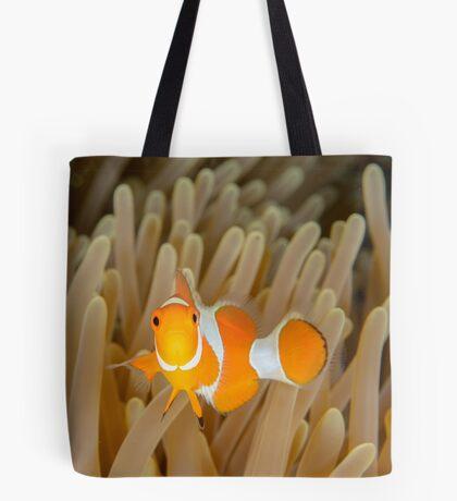 False Clown Anemonefish - Amphiprion ocellaris Tote Bag