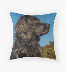 Animal, Dog, Cocker Spaniel, Black Throw Pillow