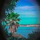 California Dreaming by Heather Friedman