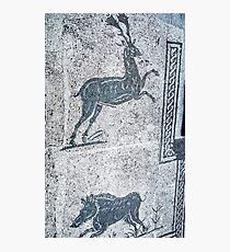 Boar and Stag Corporation Square Ostia 19840317 0019 Photographic Print