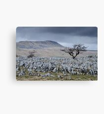Whernside & the Limestone Fields, Yorkshire Dales National Park Canvas Print