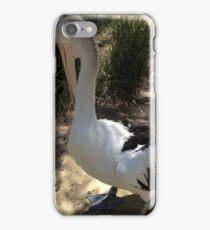 Pelican Standing iPhone Case/Skin
