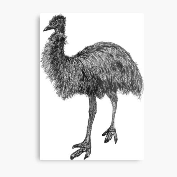 Fluffy the Emu Metal Print