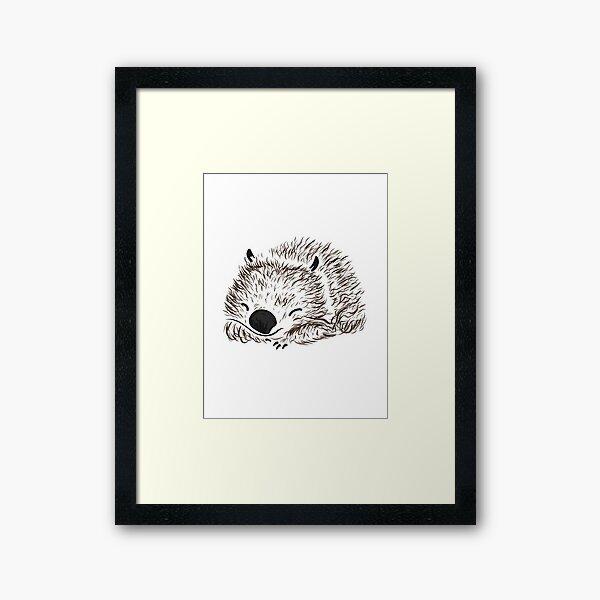 Cute Wombat Framed Art Print