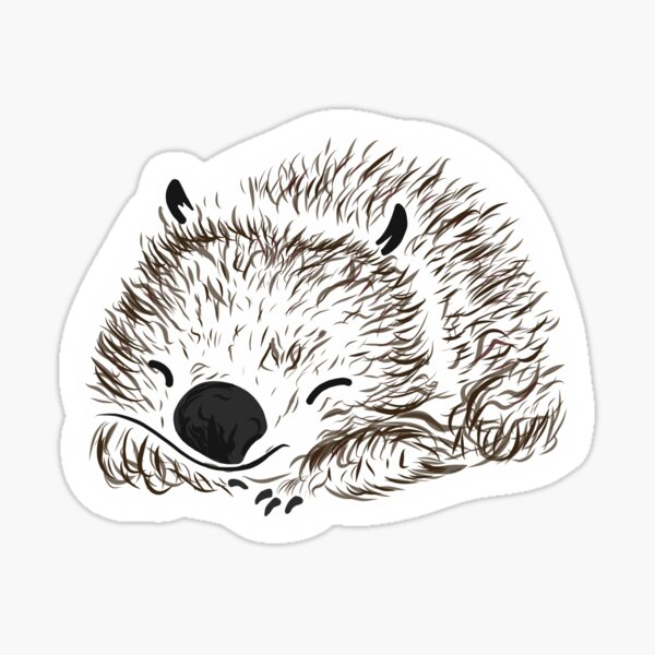 Cute Wombat Sticker