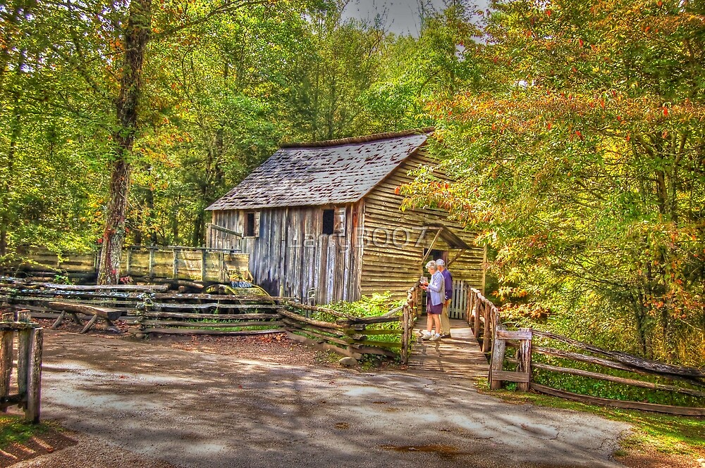 Vacation Fun in the smokies by LarryB007