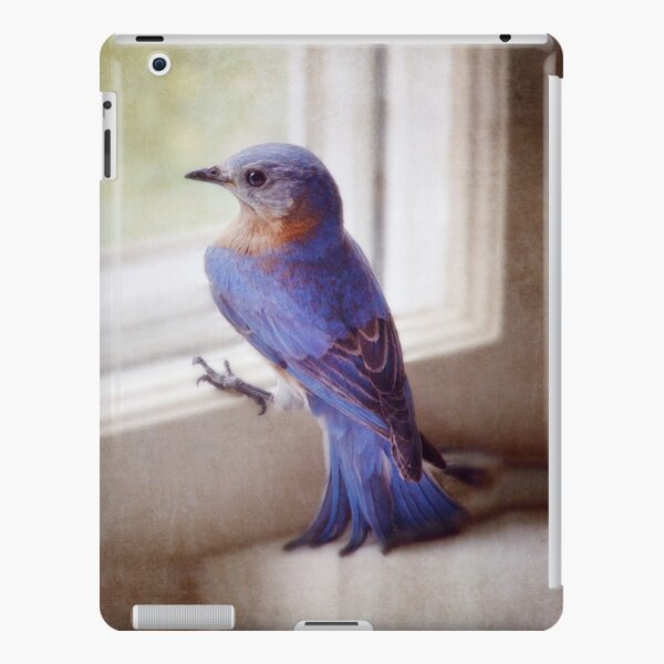bluebird in the kitchen iPad Snap Case