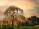 Weeping Cherry Tree by Jessica Jenney