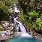 Waterfall on the way to Milford Sound by Alex Stojan