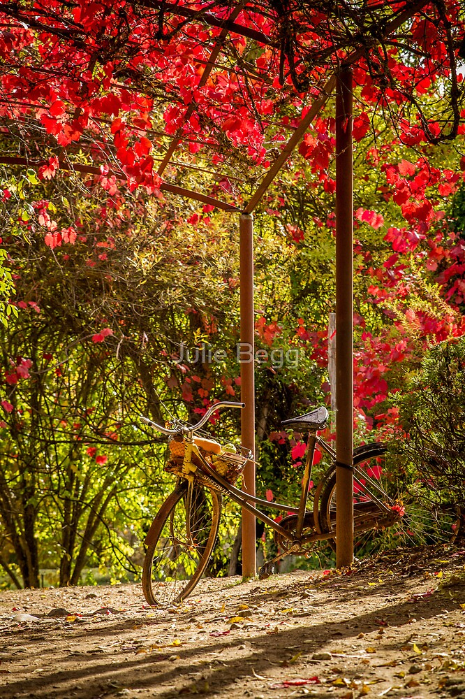 A Classic Autumn Ride, Lavendula, Daylesford, Victoria by Julie Begg