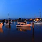 Tamar at dusk by phillip wise