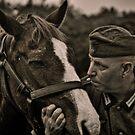 Horse Whisperer by Steve Baird