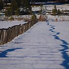 Old cold fence by the57man