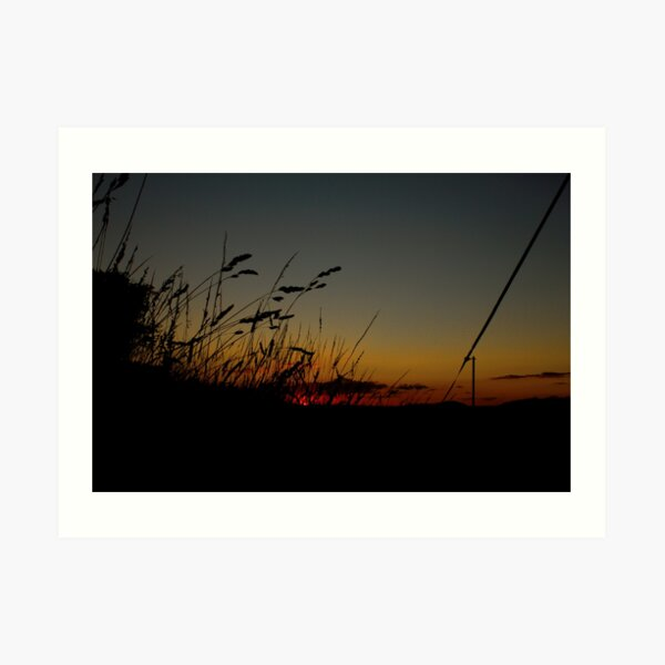 After sunset in the paddock Art Print