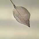 Fake Leaf with Shadow by Sorcha Whitehorse ©