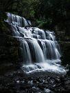 Liffey Falls by Mieke Boynton