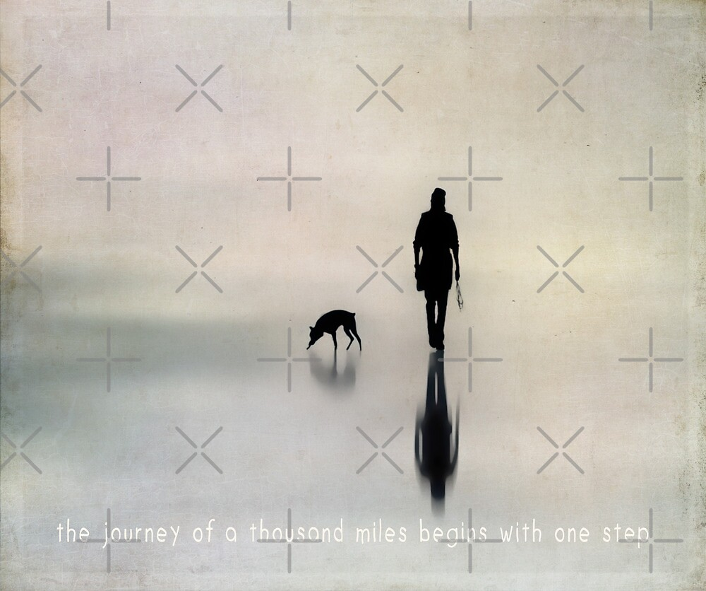 the journey of a thousand miles begins with one step by Ingrid Beddoes