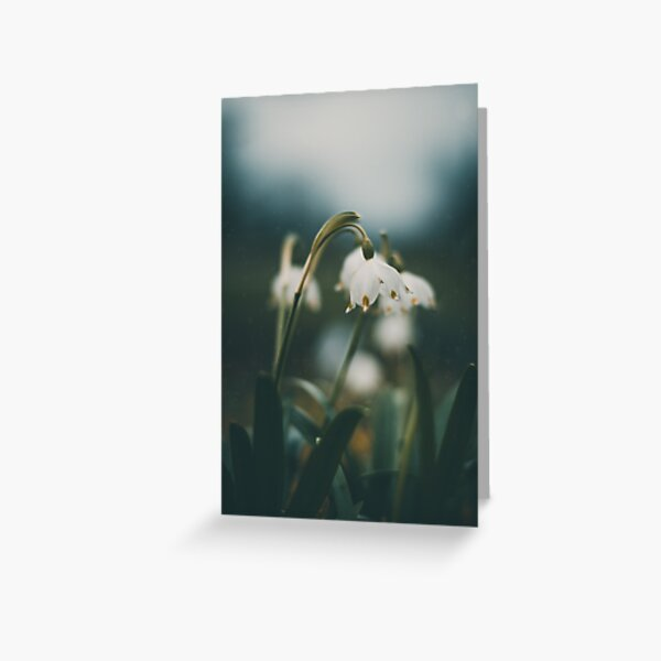 Moody snowflake flowers during Spring Greeting Card