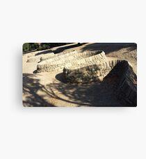 Snaking Stone Canvas Print