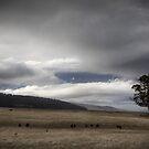 The Rain Clears by David Haworth