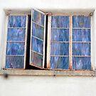 Open Window by lancheney007