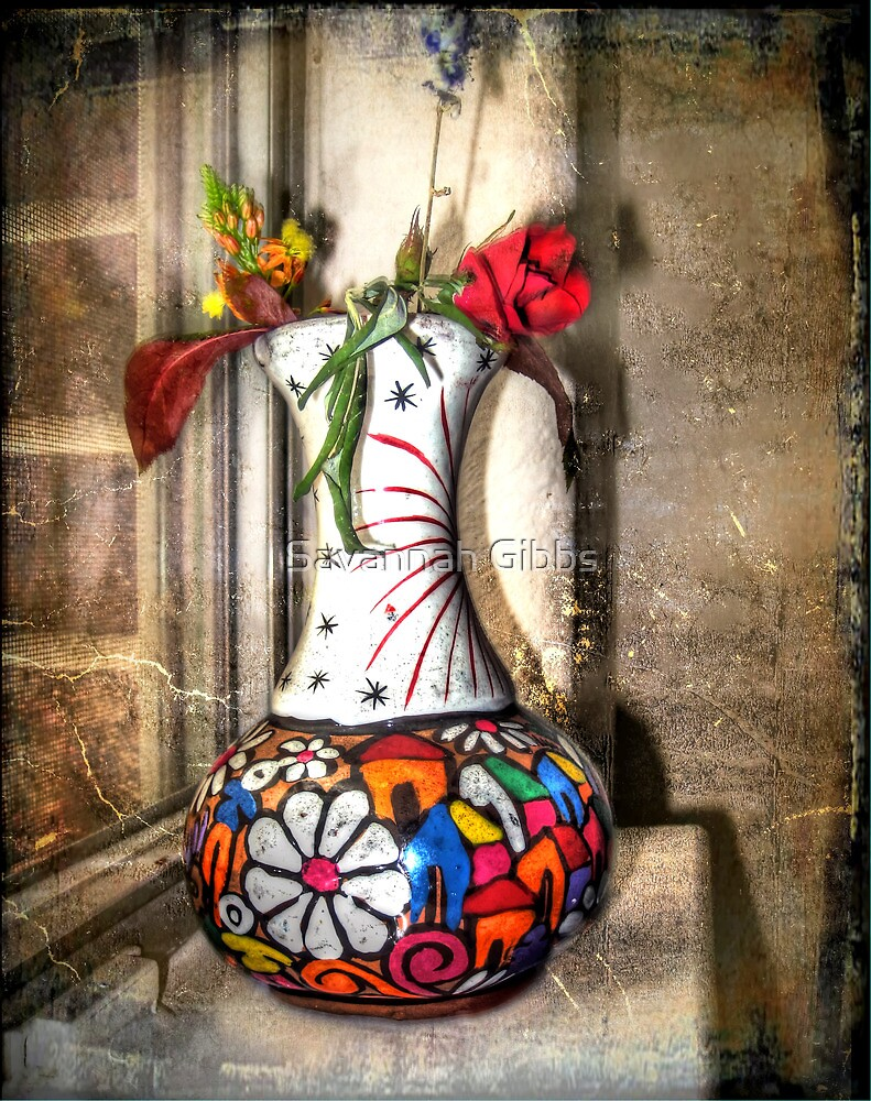 Mexican Vase  by Savannah Gibbs