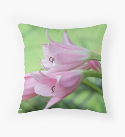 UNTOUCHED BEAUTY - the Indigenous Belladonna Lily - DIE BELLADONNA LELIE  Throw Pillow