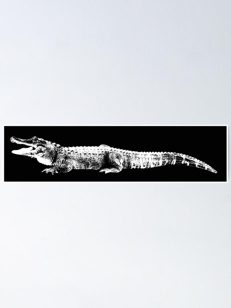 Crocodile Black and White Print Crocodile Wall Art Crocodile Wall Decor Crocodile Black and White Photo Crocodile Photo