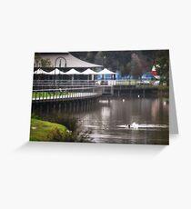 Winter's Quiet, Lake Weeroona Tea House Greeting Card