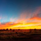Outback sunset by Stephen  Nicholson