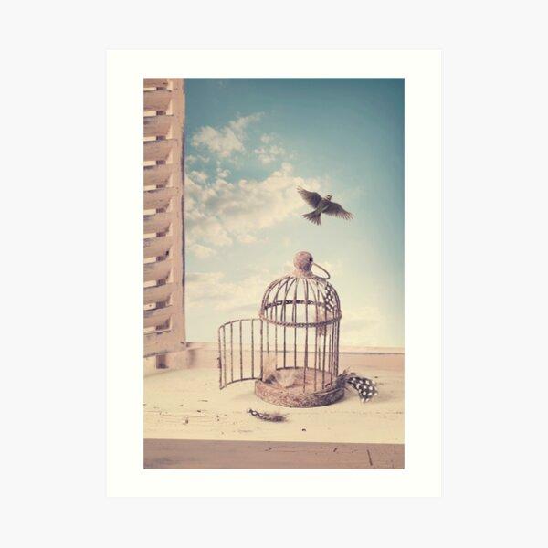 Vogel, der Käfig entkommt Kunstdruck