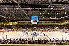 Good 'Ol Hockey Game by John Velocci