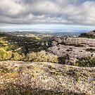 The Views from Montcau's Hillside by Marc Garrido Clotet