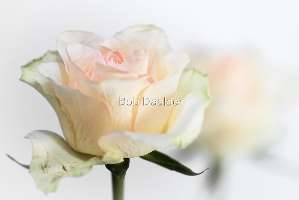 Mature Beauty... by Bob Daalder