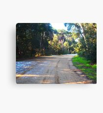 Road in the reserve in winter Canvas Print