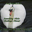 Banner for Something White Challenge Winner by quiltmaker