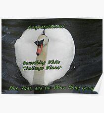 Banner for Something White Challenge Winner Poster