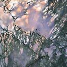 Moss agate by Egor Gavrilenko