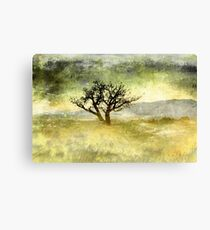 Tree at Dusk in Waikoloa 3 Canvas Print