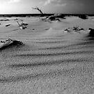 Logans Lagoon Flinders Island by Andrew  Makowiecki