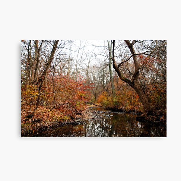 After the First Frost Canvas Print